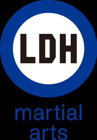 LDH martial arts