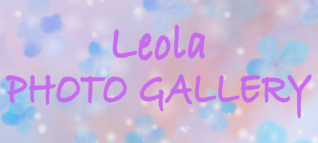 Leola PHOTO GALLERY